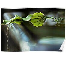 Water Sculpture Debris Poster