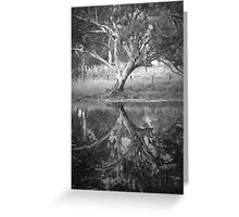 Scary Tree- Reflection in a Pond, Harrogate Greeting Card