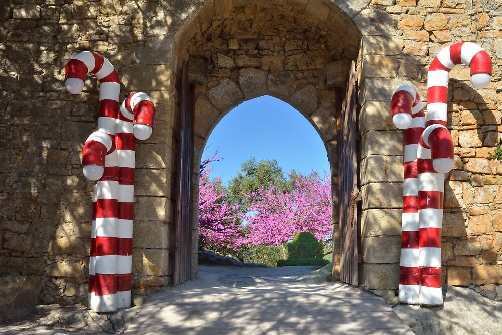 Decorated Gate at Obidos, Portugal by Stephen Frost