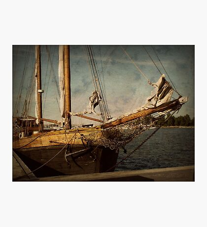 old sailor Photographic Print