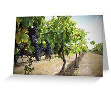Vintage Vines v.2 Greeting Card