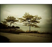 lake ontario, toronto Photographic Print