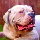 Bulldog Art Prints from Painting by Iain McDonald