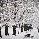 Wheeler Farm in Winter by Sam Scholes