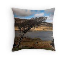 windswept tree.. Throw Pillow