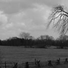 Norwood Countryside- B&W Series # 4 by Les Wazny