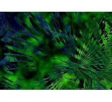 Abstract earth - land and sea Photographic Print