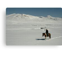 Rider on snow covered mountain plain, Tien-Shan, Kyrgyzstan Canvas Print
