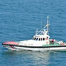 Spanish Police Vessel by Steve
