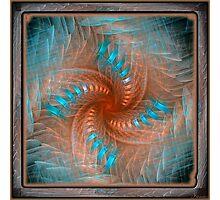Gnarl Spiral Photographic Print