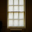 Window Blind  by richard  webb