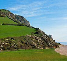 Coastal Path At Branscombe by Susie Peek