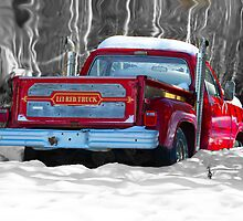 Little Red Truck by Vanessa Truter