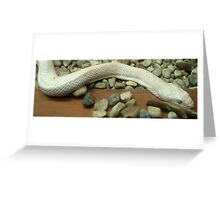 Slither... Greeting Card