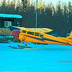 Float Plane by Vanessa Truter