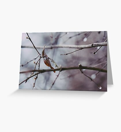 Adrift In Thought Greeting Card