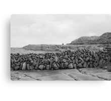 Drystone Wall in black & white  Canvas Print