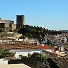 Medieval Obidos, historic walled city in Portugal by Steve