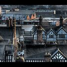 Roof tops by Peter Davies