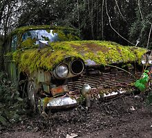 A (non) rolling car gathers some moss by Rob Hawkins