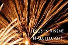 fireworks easter card by dedmanshootn