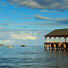 Morning Light On The Hanalei Pier by James Eddy