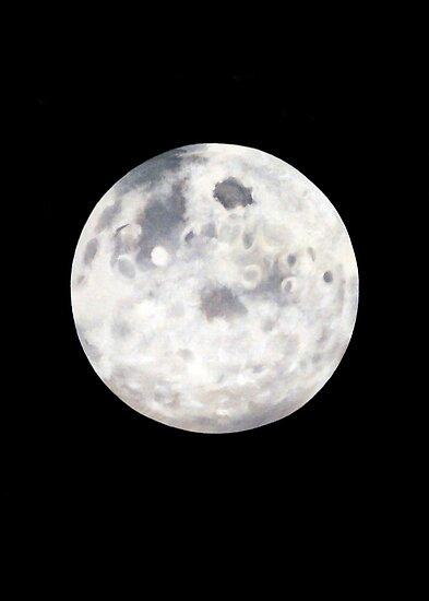 Full Moon in Black Night by Janice Dunbar