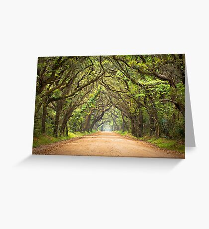 Botany Bay Road - Edisto Island, SC Greeting Card