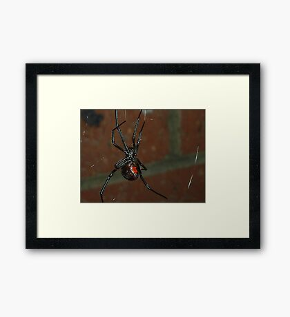 The Web of Doom Framed Print