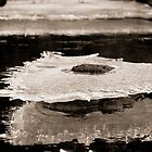 Abstract Ice on the Rappahannock River - 6  by Stephen Graham