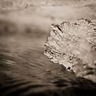 Abstract Ice on the Rappahannock River - 8  by Stephen Graham