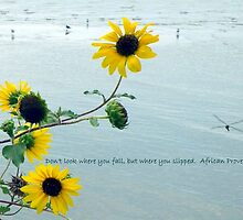Sunflower And A Proverb by SuddenJim