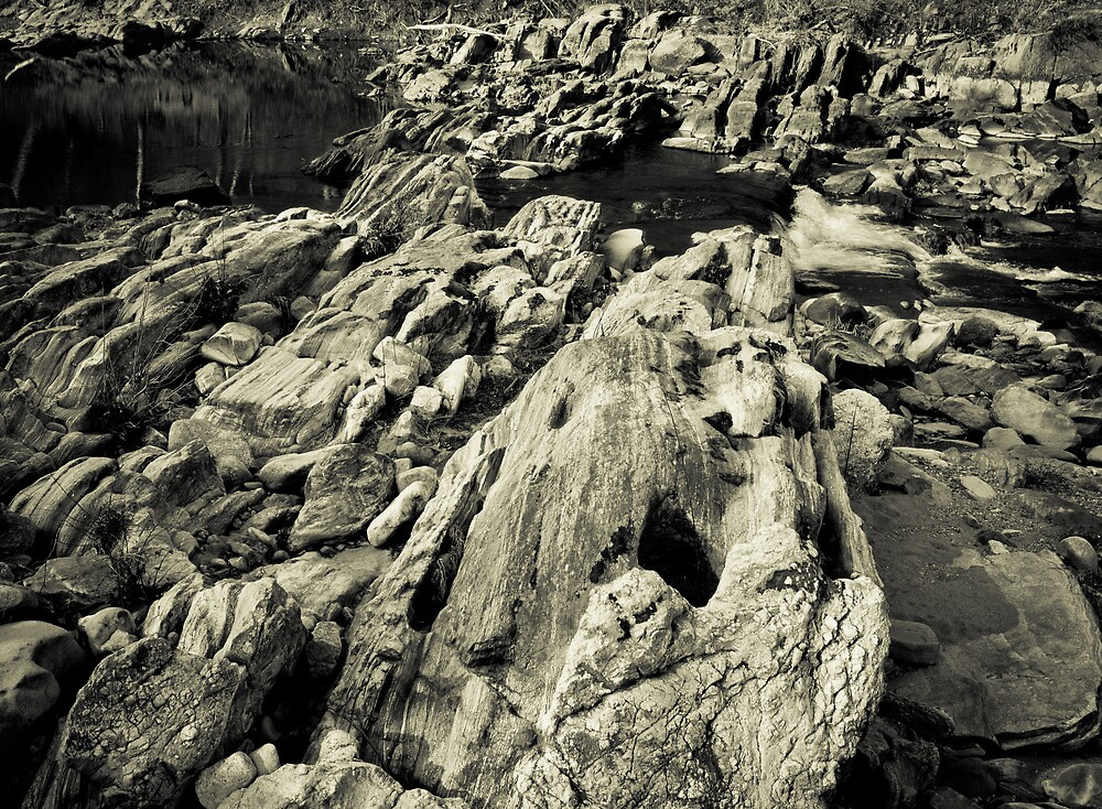 Fall Line - Photography along the Rappahannock River by Stephen Graham