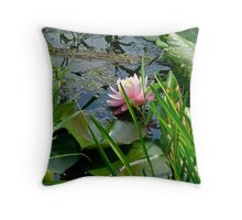 Lily Pads and Pink Water Lily - Nymphaeaceae Throw Pillow