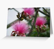 Exotic Pink Flower Greeting Card