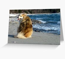 Gracie and the Waves Greeting Card