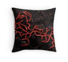 Hemitrichia serpula, wierd prtezel slime mould Throw Pillow