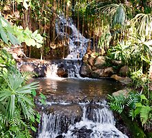 Jungle Pool & Falls by phil decocco
