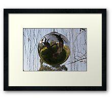 Sphere-willow Framed Print