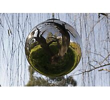 Sphere-willow Photographic Print