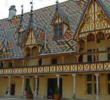 Distinctive Roof, Burgundy, France by TeaCee