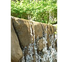 water flowing over falls surrounded by gigantic trees Photographic Print