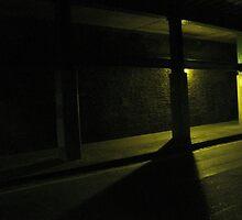Streetlight by Bridget Rust