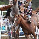 cowboy broncoe by Tamara Cornell