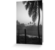 Palm Greeting Card