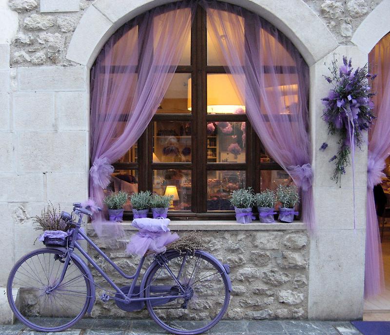 Celebrating the lavender harvest by Trine