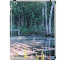 Seneca Ponds iPad Case/Skin