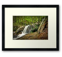 Autumn Afternoon at Olinda Falls Framed Print