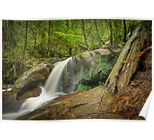 Autumn Afternoon at Olinda Falls Poster