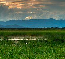 Blue Hills by Lincoln Stevens